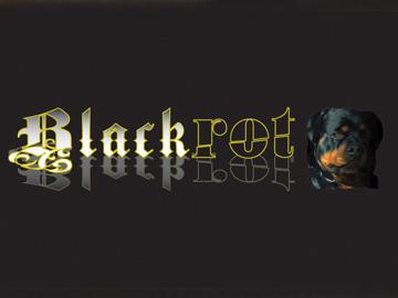Blackrot Logo Design & Branding